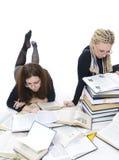 Les deux jeunes étudiants Image stock