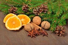 Les différents genres d'épices, écrous, ont séché des oranges, des cônes et le spruse Photo stock