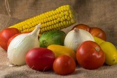 Les différents genres de légumes se trouvent ensemble sur une table, tomates, oignons et maïs Image stock