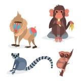 Les différents pains monkey l'illustration sauvage animale de vecteur de chimpanzé de singe de zoo de caractère Image libre de droits