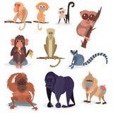 Les différents pains monkey l'illustration sauvage animale de vecteur de chimpanzé de singe de zoo de caractère Photo stock