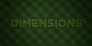 Les DIMENSIONS - lettres fraîches d'herbe avec des fleurs et des pissenlits - redevance rendue par 3D libèrent l'image courante Illustration Stock