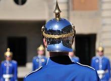 Les dispositifs protecteurs royaux Images stock