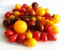 Les diverses tomates multicolores ont inclus les jaunes et les rouges FO prêtes Photo stock