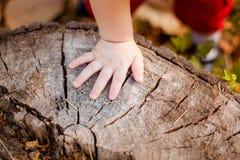 Les doigts du petit bébé Image libre de droits