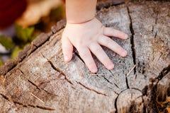 Les doigts du petit bébé Photos stock