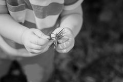 Les doigts du petit bébé Photo stock