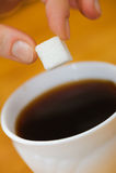 Les doigts tiennent un morceau de sucre de morceau au-dessus de tasse de thé Photo libre de droits