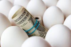 Les dollars d'Etats-Unis ont roulé dans un tube sur le plan rapproché de fond d'oeufs de poulet de blanc Photo libre de droits