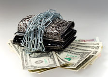 Les dollars, la chaîne et le portefeuille d'argent Photographie stock