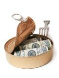 Les dollars peuvent dedans Images stock