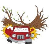 Les dommages de branche d'arbre ont garé la voiture photo stock