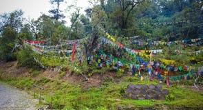 Les drapeaux colorés de prière ont attaché aux arbres sur la route à Thimphou à Punakha Photos libres de droits