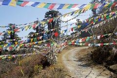 Les drapeaux de prière à la La de Yutong passent, le Bhutan Image stock