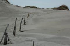 Les dunes avec l'herbe à la côte de la Mer du Nord en Zélande aux Pays-Bas image libre de droits