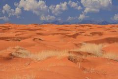 les dunes de désert sablent la mer Images libres de droits
