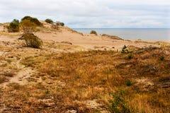 Les dunes de mer baltique Image libre de droits