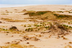 Les dunes de mer baltique Photos stock