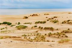 Les dunes de mer baltique Images stock
