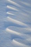 les dunes de neige Photo libre de droits