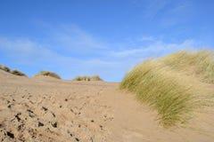 Les dunes de plage sablonneuse. Image libre de droits