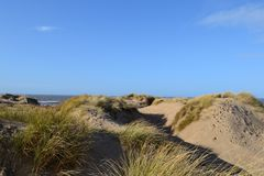 Les dunes de plage sablonneuse. Photographie stock libre de droits