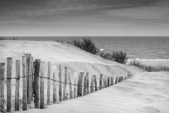 Les dunes de sable herbeuses aménagent en parc au lever de soleil en noir et blanc Images stock