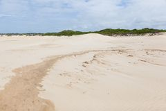 Les dunes et la végétation du cap St Francis échouent images stock