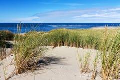 Les dunes néerlandaises sur une île aux Pays-Bas Photo libre de droits