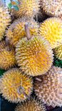 Les durians Photos stock