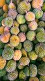 Les durians Photos libres de droits