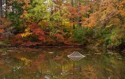 Les eaux d'automne Images stock