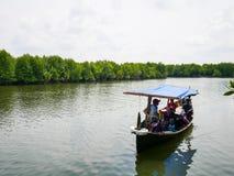 Les eaux de Carry Tourists Around Mangrove Forest de bateau images libres de droits