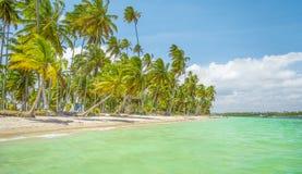 Les eaux de plage de Carneiros Photo libre de droits