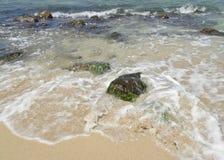 Les eaux hawaïennes Photos libres de droits