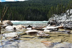 Les eaux molles Images stock