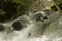 Les eaux sauvages Photos stock