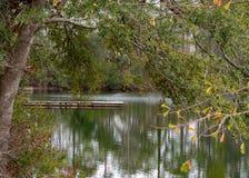 Les eaux toujours sur un étang caché image stock