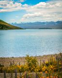 Les eaux tranquilles du lac Tekapo en été Photo stock