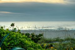 Les eaux tranquilles, Sandy Beach Among Sea Oats Image stock
