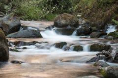 Les eaux transparentes de la rivière de Savegre Costa Rica Photographie stock libre de droits