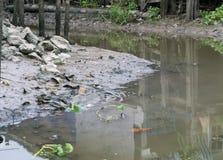 Les eaux usées  Photos libres de droits