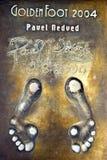 Les empreintes de pas de Nedved Image stock
