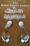 Les empreintes de pas de Zico Image stock