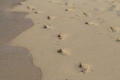 Les empreintes de pas en mer ont mouillé le sable Photos libres de droits