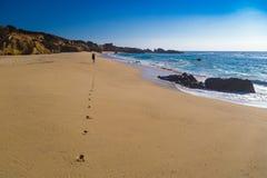 Les empreintes de pas traînent sur la plage en parc d'état de Garrapata, Califor Photo stock