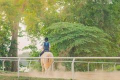 Les enfants apprennent à monter un cheval près de la rivière images libres de droits