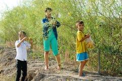 Les enfants asiatiques, bong dien dien, sesbana de Sesbania, delta du Mékong photo libre de droits