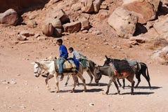 Les enfants attend des touristes pour le tour d'âne Photo libre de droits
