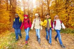 Les enfants avec le groupe jaune de feuilles d'érable marchent dans la forêt Image stock